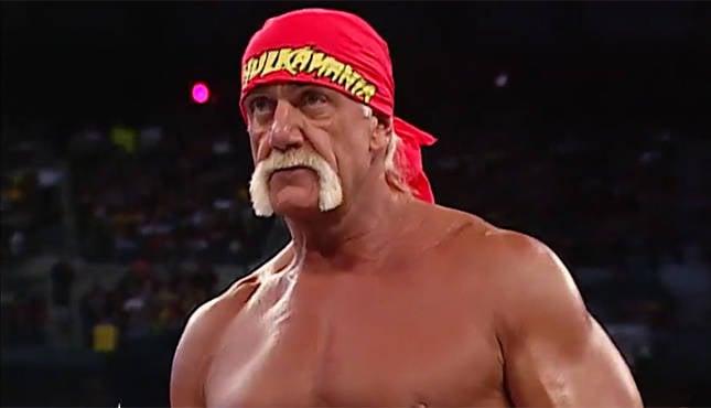 Hulk Hogan WWE, WCW