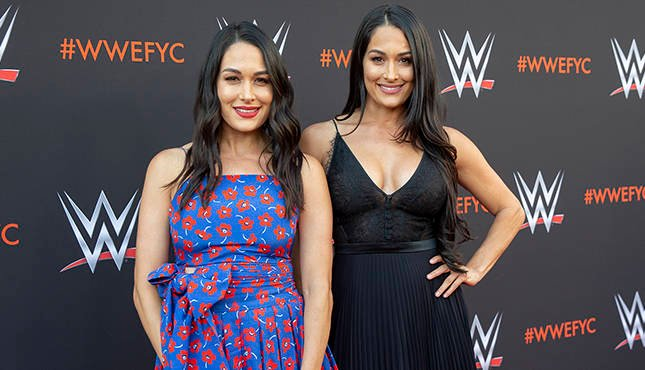 Bella Twins WWE Emmy Bellas
